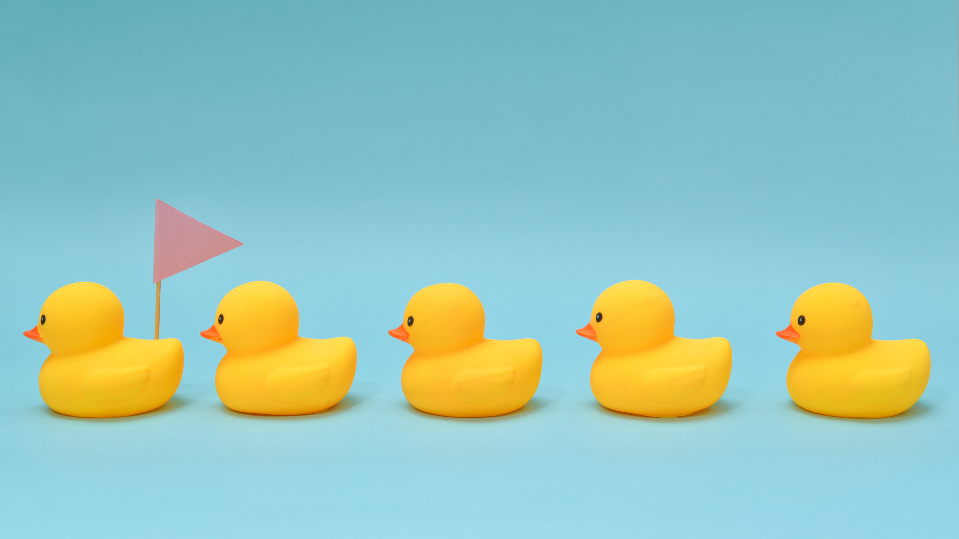 line-of-rubber-ducks-following-each-other-with-red-flag-on-blue-background